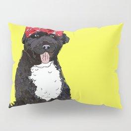 Political Pup - Regiser to Vote Pillow Sham