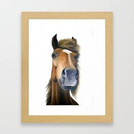 Chestnut Pony Framed Art Print