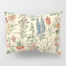Vintage Floral Drawings // Fleurs by Adolphe Millot XL 19th Century Science Textbook Artwork Pillow Sham