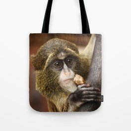 Young Debrazza's Monkey  Tote Bag