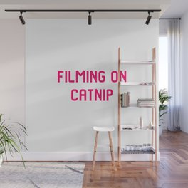 Filming on Catnip Pet Stunt Coordinator Quote Wall Mural