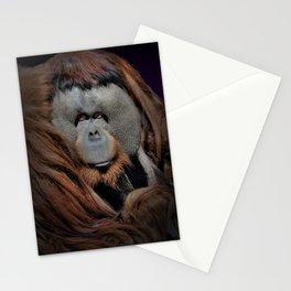 Rudi V Stationery Cards