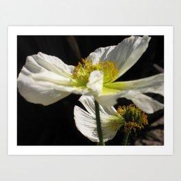 Floral Dream Art Print