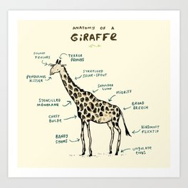 Anatomy of a Giraffe Art Print