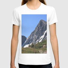 Mount Dana T-shirt