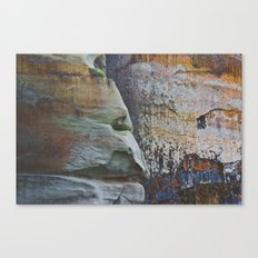 Clever Guise Canvas Print