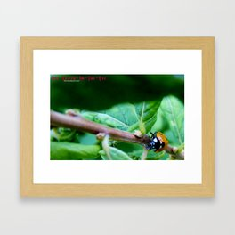 The long climb Framed Art Print
