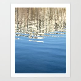 White Water Reflection Art Print