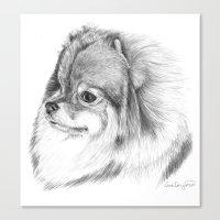pomeranian Canvas Prints featuring Pomeranian by Doggyshop
