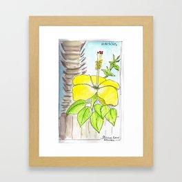 Mellow Yellow in Hawaii Framed Art Print