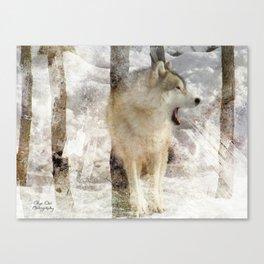 Wild Call Canvas Print