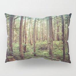 Outdoor Adventure Pillow Sham