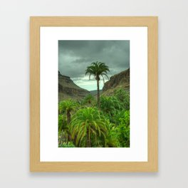 Palmitos Palms Framed Art Print