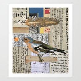 British Birds Art Print