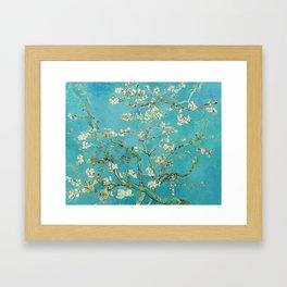 Almond Blossom by Vincent van Gogh, 1890 Framed Art Print