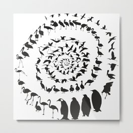 Waterfowl birds in a spiral Metal Print