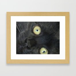 The Eyes Have It Framed Art Print