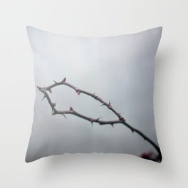 The Crown Of Thorns Throw Pillow