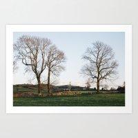 Trees and barns at sunset, above Matlock. Derbyshire, UK. Art Print