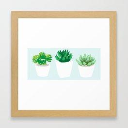 Trio of Succulents Framed Art Print