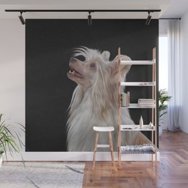 Drawing, illustration Chinese crested dog Wall Mural