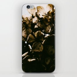 Dried iPhone Skin