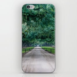 Tangled Trees iPhone Skin