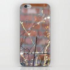 Inner World iPhone & iPod Skin