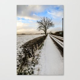 The tree by the snowy road Canvas Print