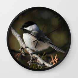Cedar Singer Wall Clock