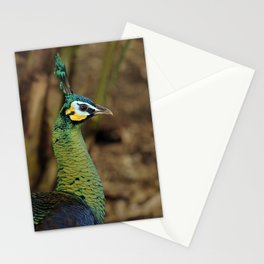 Green Peafowl Stationery Cards
