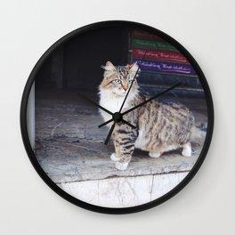 Cats of Istanbul II Wall Clock