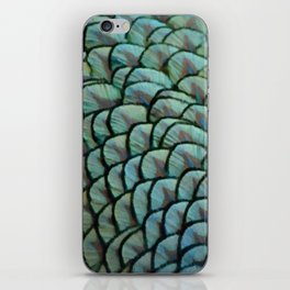 Beautiful Elegant Peacock Feathers iPhone Skin