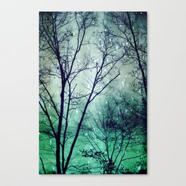 Wintergreen Twilight Canvas Print
