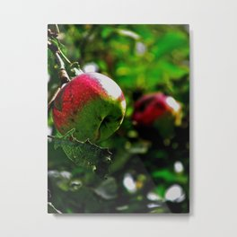 Almost Ready Metal Print