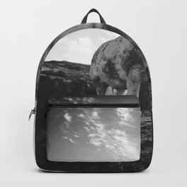 Horse (Black and White) Backpack