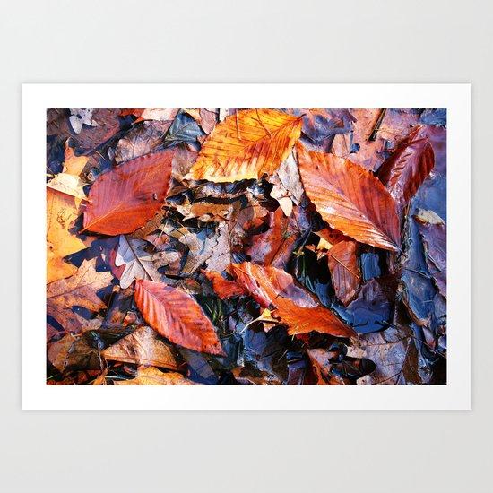 Fallen Foliage I Art Print