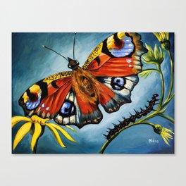Peacock Butterfly & Caterpillar Art Print Canvas Print