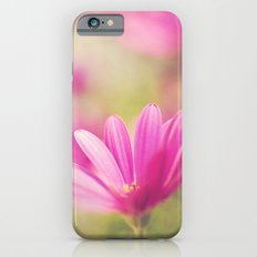 Basking in the Sun iPhone 6s Slim Case