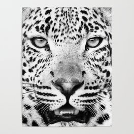 Leopard, Animal, Scandinavian, Minimal, Trendy decor, Interior, Wall art Art Poster