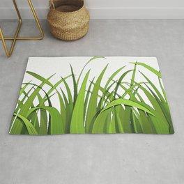 Grass Plant Poaceae Gramineae ubiquitous monocotyledonous grasses pasture Rug