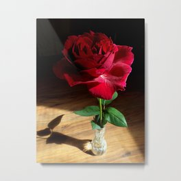 Boldly Beautiful Metal Print