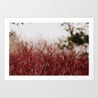 Whispering Red Land  Art Print