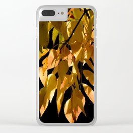Canadian white ash Clear iPhone Case