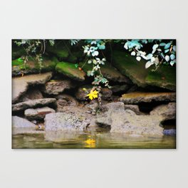 Low Tide One The Riverbank Canvas Print