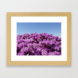 """View of """"Mount Rhodendron"""" on a clear day Framed Art Print"""