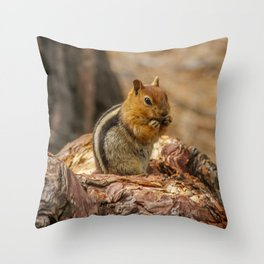 The Squirrel and the Redwood Throw Pillow