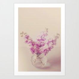 Lilac Stocks  Art Print
