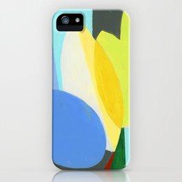 Chroma 9 iPhone Case