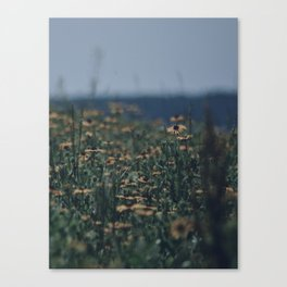 Wildflowers By The Lake Canvas Print